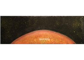 XX Venus